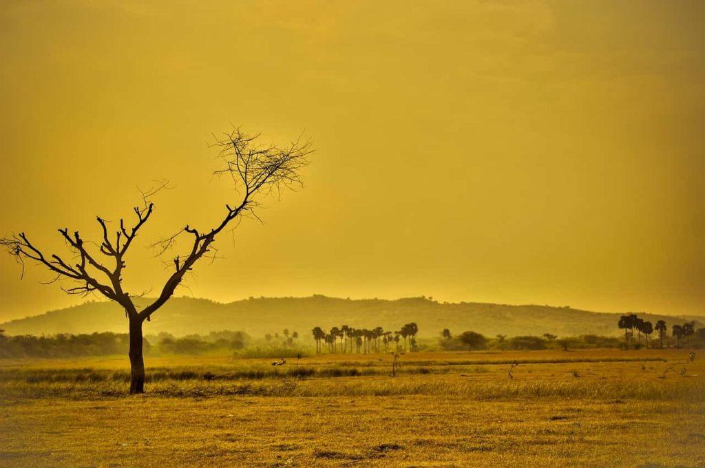 地球温暖化問題の原因・影響・対策!地球温暖化について学ぼうk (19)