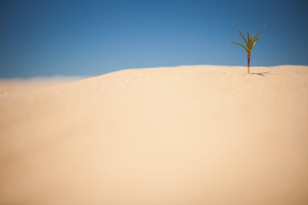 地球温暖化の原因とゴミについて